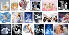 anges google.png